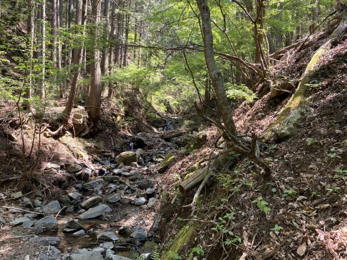 九鬼山の登山道で見える川