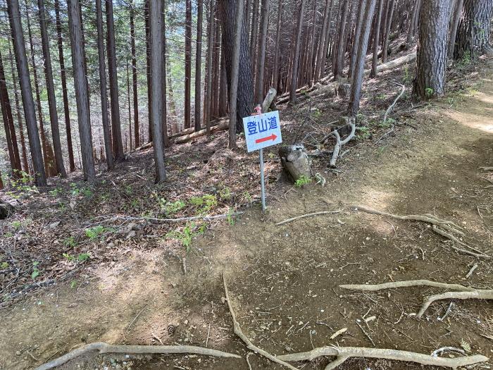 九鬼山の登山道